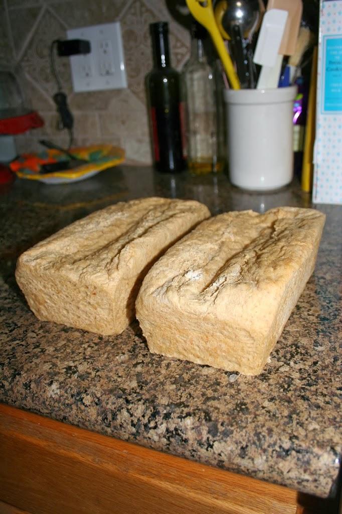 Homemade Honey Wheat Bread ~